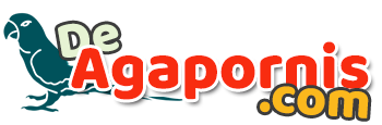De Agapornis